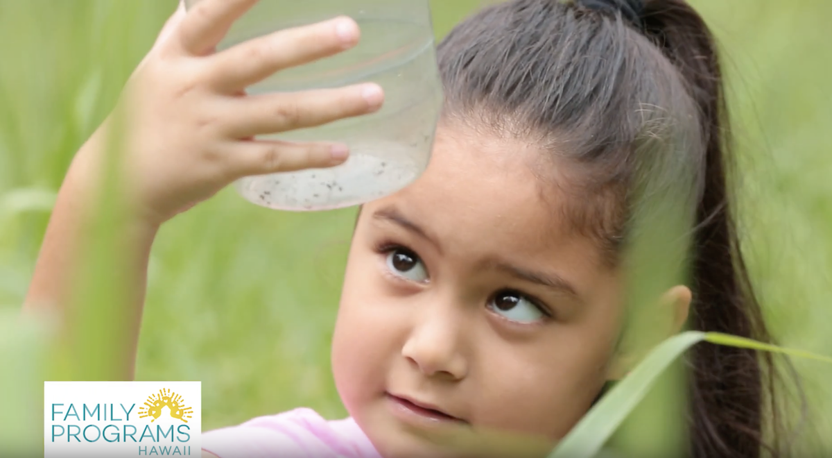 Girl catches grasshoppers in a jar with volunteers at family programs hawaii